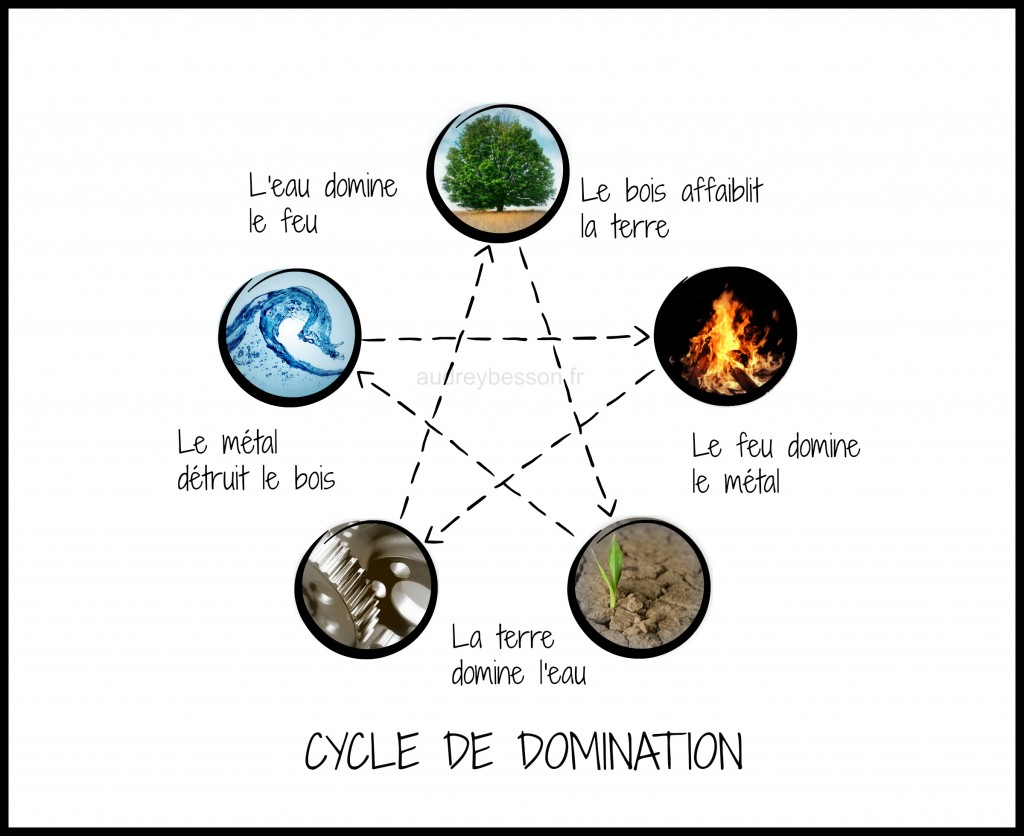 cycle de domination