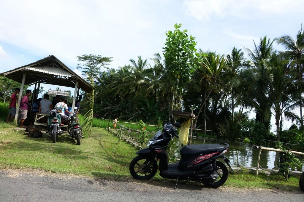 pêche Ubud Bali Indonésie