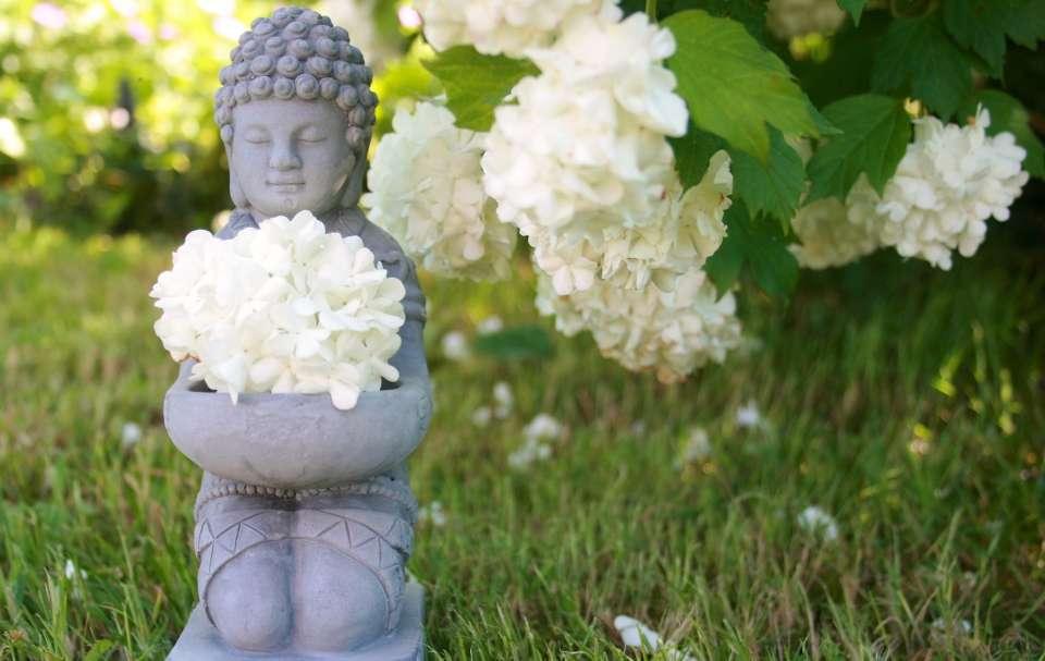 citation proverbe zen détente relaxation