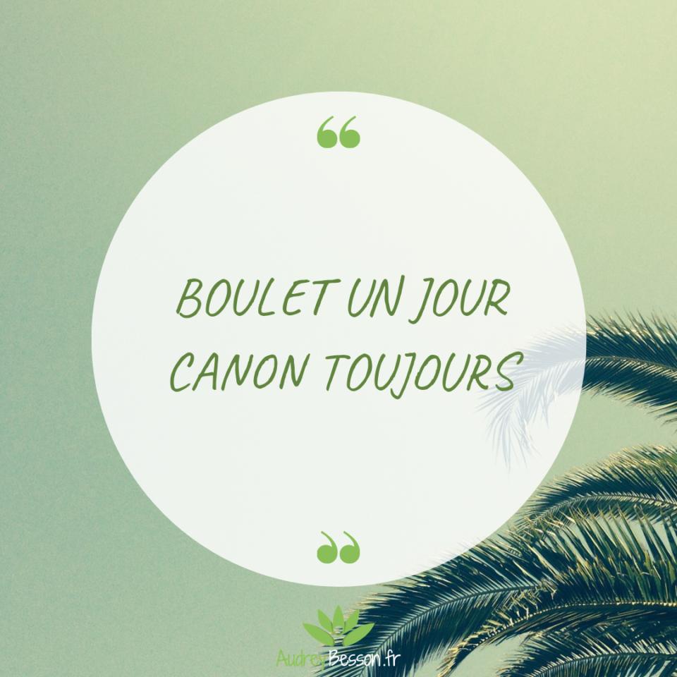 Citation Proverbe Humour Boulet Un Jour Canon Toujours