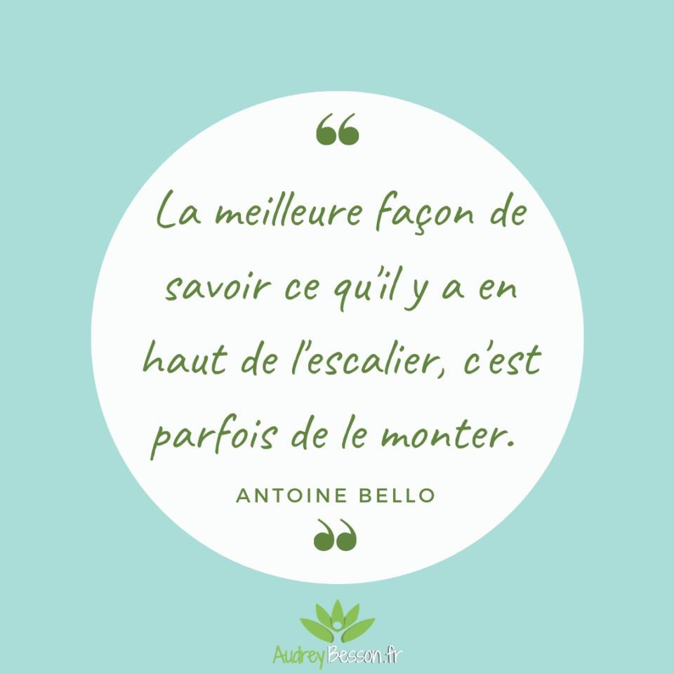 La Meilleure Façon De Savoir Ce Qu'il Y A En Haut De L'escalier, C'est Parfois De Le Monter. Antoine Bello