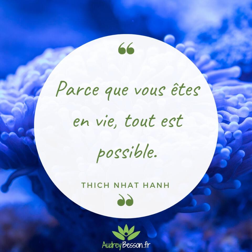 Parce Que Vous Êtes En Vie, Tout Est Possible – Thich Nhat Hanh Citation Proverbe