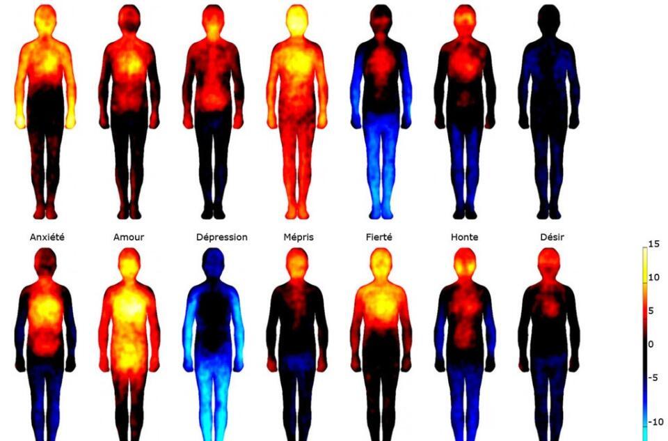Comment Exprimer Vos Émotions Cartographie