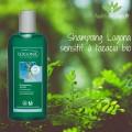 shampoing logona test sensitif acacia bio avis retour
