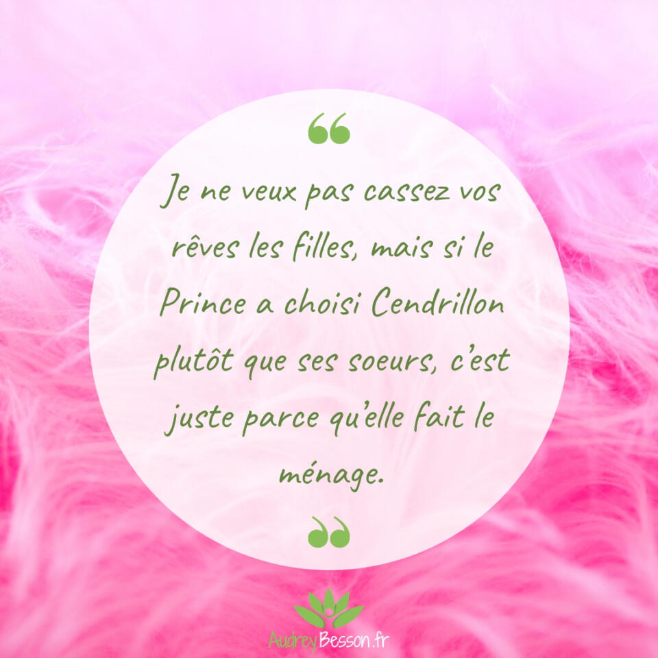 Je Ne Veux Pas Cassez Vos Rêves Les Filles, Mais Si Le Prince A Choisi Cendrillon Plutôt Que Ses Soeurs, C'est Juste Parce Qu'elle Fait Le Ménage