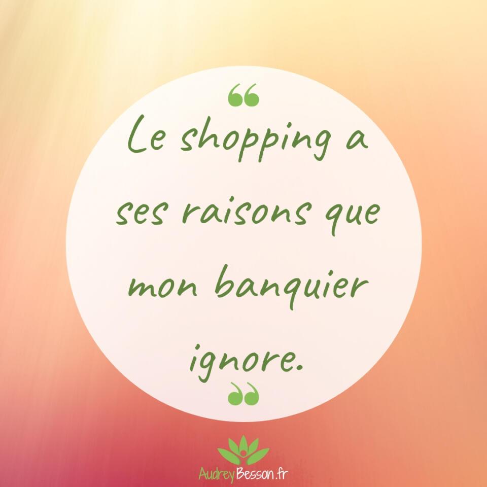 Le Shopping A Ses Raisons Que Mon Banquier Ignore Citation Proverbe