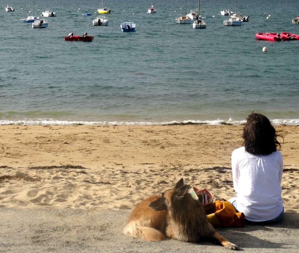 plage crozon weekend détente relaxation chien