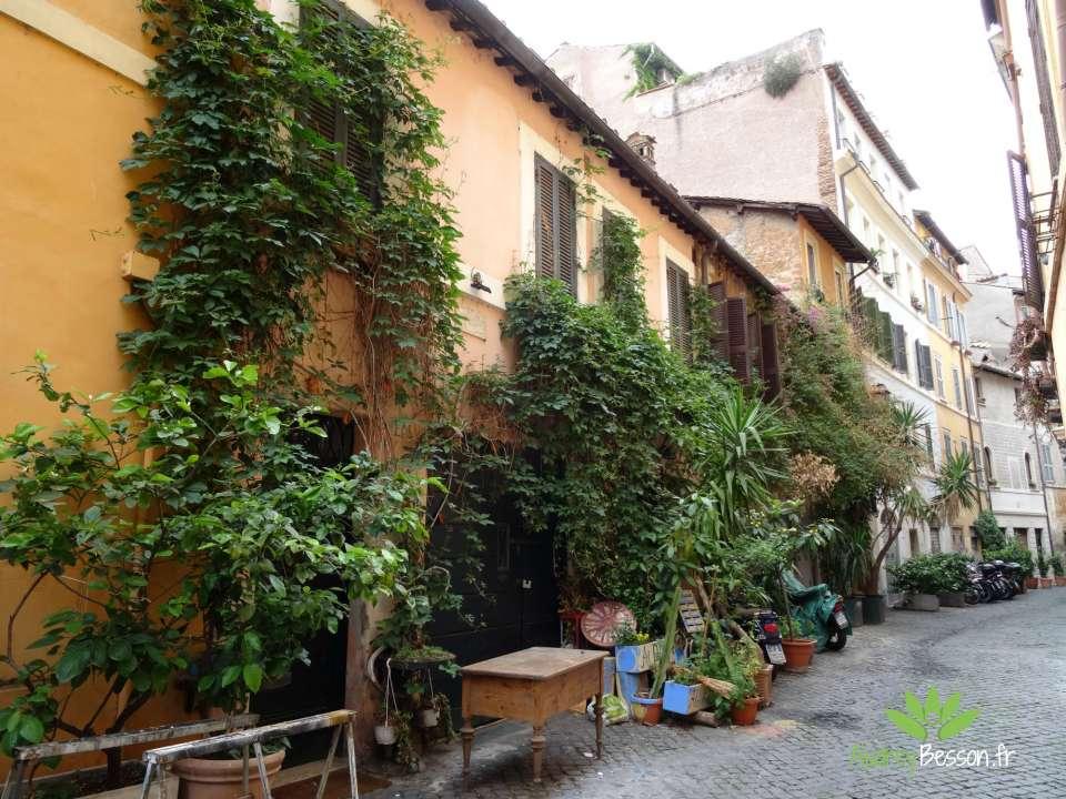 art de vivre rome italie visite place voyage rue