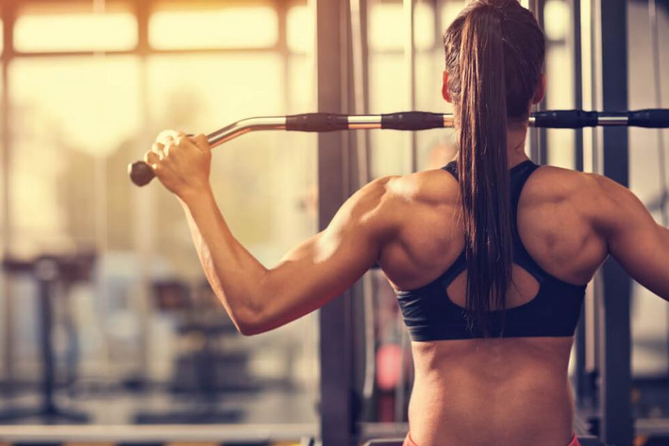 Débuter En Musculation