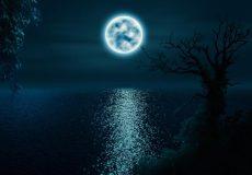 La Pleine Lune Du 17 Juin 2019 Lune De Miel Et Lune Aux Fraises