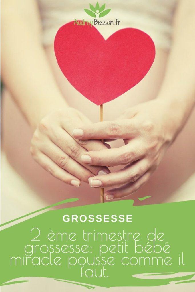 2 Ème Trimestre De Grossesse Petit Bébé Miracle Pousse Comme Il Faut 2