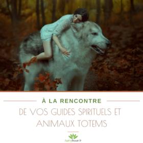 ebook 2 a la rencontre de vos guides spirituels et animaux totems audrey besson stage exercices paiement boutique acheter