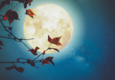 Pleine Lune Du 1 Er Octobre 2020