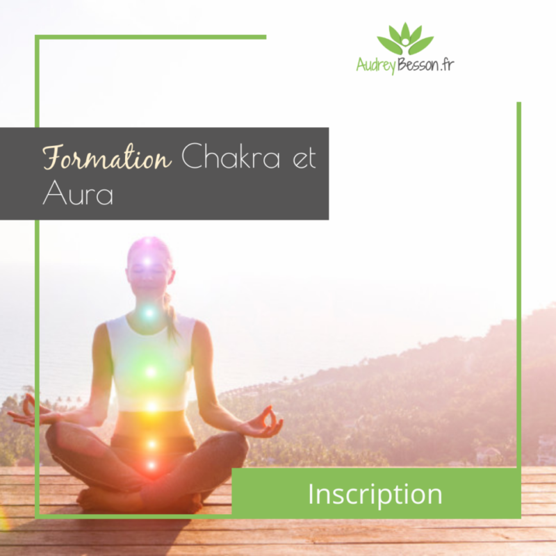 Post Formation Chakras Et Aura Audrey Besson E Learning Formation En Ligne Distance