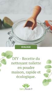 Recette Ecologique Economique Nettoyant Poudre Wc Toilette Maison